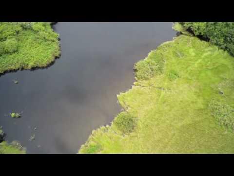 Drone Flight Over the Bas Ogooué