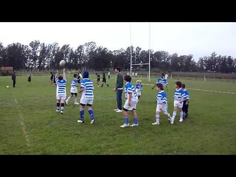 calentamiento de la infantiles de colon rugby!! parte 2..