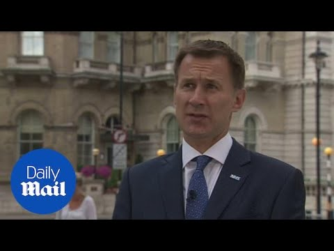 'David Davis was one of the great Brexit architects': Jeremy Hunt