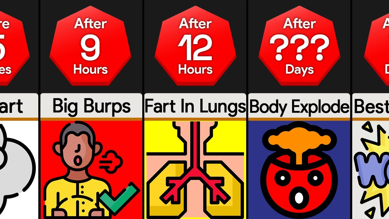 Timeline: What If You Held In All of Your Farts