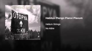 Habitus Plango Planxi Plaxum