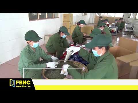 Xuất Khẩu Chè Giảm Cả Về Lượng Và Kim Ngạch   FBNC