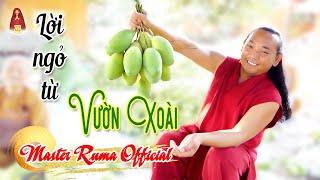 Lời Ngỏ Từ Vườn Xoài | Có Gì Trong Những Trái Xoài Của Minh Sư Ruma? Master Ruma Official