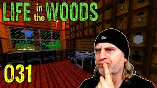 Minecraft [031] [Neue Regale und mehr Stauram] [Life in the Woods] Deutsch German thumbnail