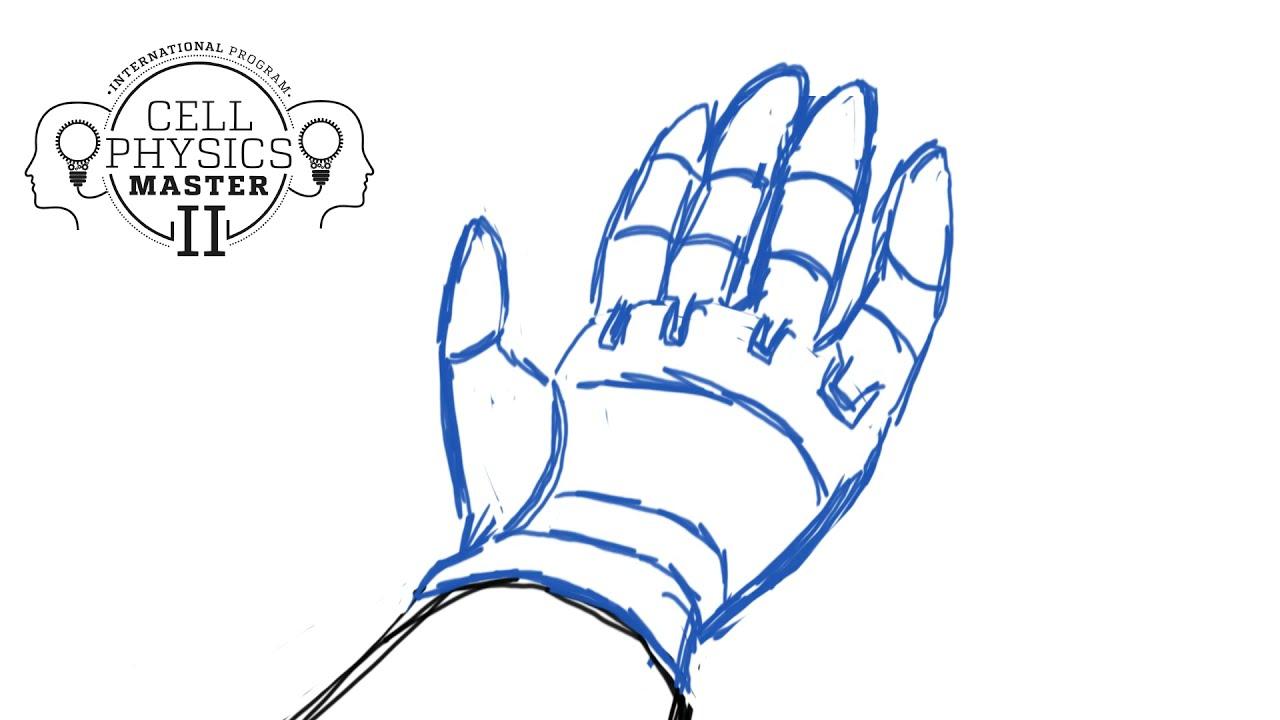 Sensory prostheses