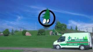 видео Газон рулонный – быстрое озеленение