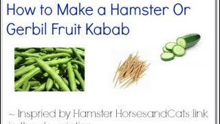 How To Make A Hamster Or Gerbil Fruit And Veggie Kabab