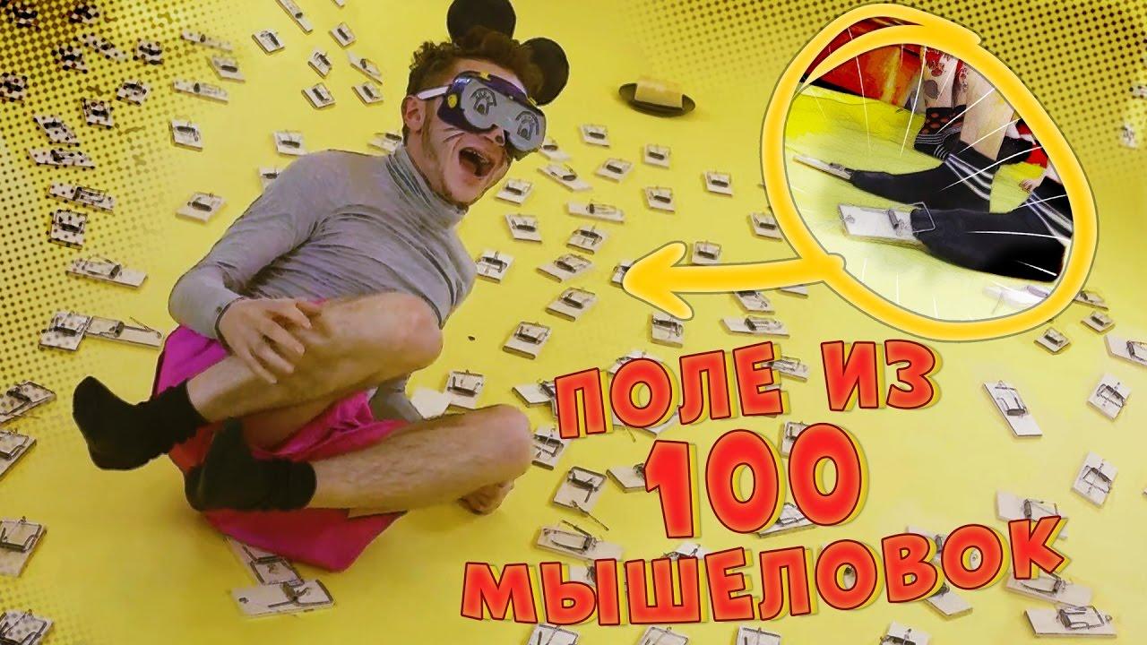 МЫШКИ - ПОЛЕ ИЗ 100 МЫШЕЛОВОК