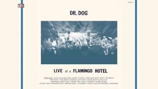 "Dr. Dog - ""These Days"" (Full Album Stream)"
