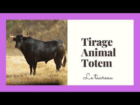 Tirage de l'animal totem de la semaine du 11/03/2019 : LE TAUREAU