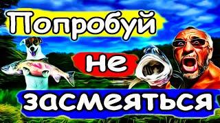 Большой улов Смешные случаи на рыбалке Приколы на рыбалке 2020 Неудачи на рыбалке Новинка 28