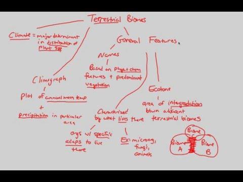 Biomes/Aquatic Ecology - Terrestrial