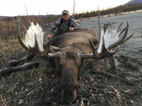 Alaska Brooks Range  Moose Hunt 2018 / Kent Kaiser Alaska