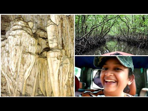 Travelling To BARATANG Island - Jarawa,LimeStone Caves,Active Mud Volcano /Andaman Series'