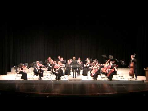 RSHS Chamber Orchestra Fall Concert