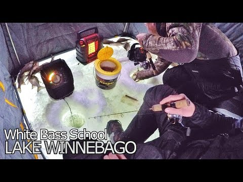 Lake Winnebago Ice Fishing - White Bass School
