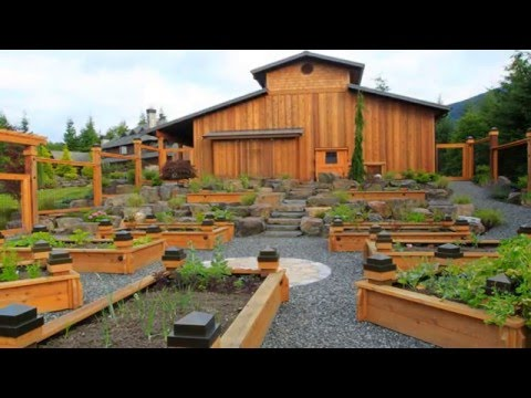 Backyard Raised Bed Gardening Ideas YouTube