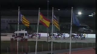 Vidéo de la course PMU PREMI CAMPIO DE CAMPIONS