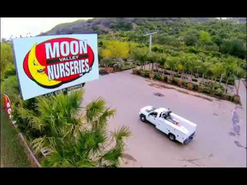 Moon Valley Nurseries In Escondido