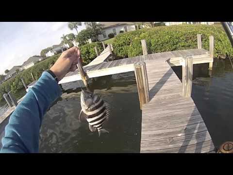 Vero beach inshore hatcam fishing part ii doovi for Vero beach fishing pier