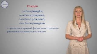 Русский 7 Полные и краткие страдательные причастия