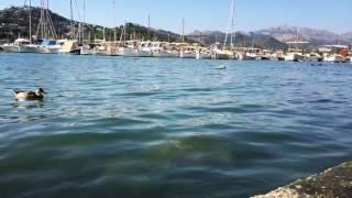 Timelapse weekend in Majorca - July 2016 (1)