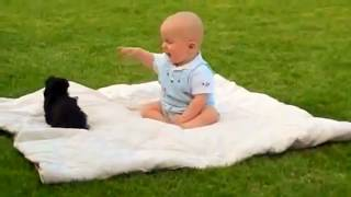 Smile Bomb: Baby & Cute Puppy Play - Funny Animals - America's Funniest Viral Videos