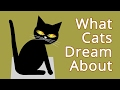 What Do Cats Dream About? [animated short]