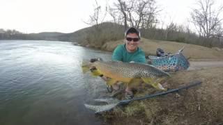 Big Arkansas Brown trout