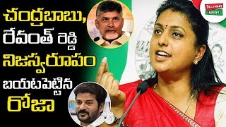 YSRCP MLA Roja Sensational Comments On AP CM Chandrababu Naidu and Congress Party | Tollywood Nagar