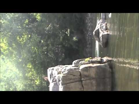 anvil rock west virginia