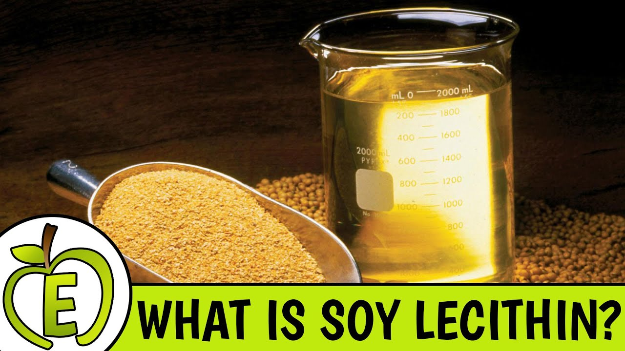 Lecithin: what is it 21