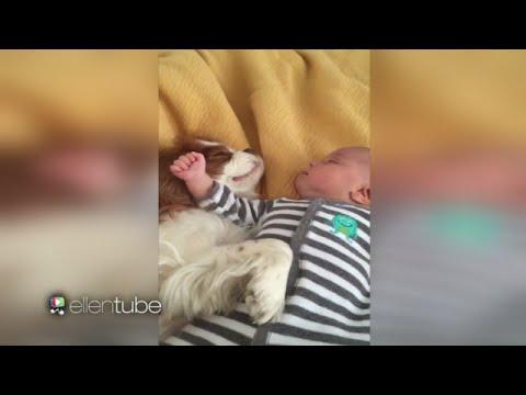 It's Nap Time