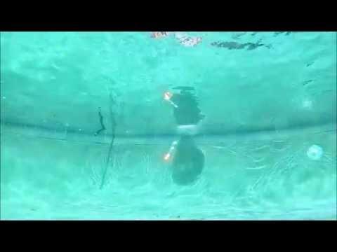 Firing Flare Gun Into Pool
