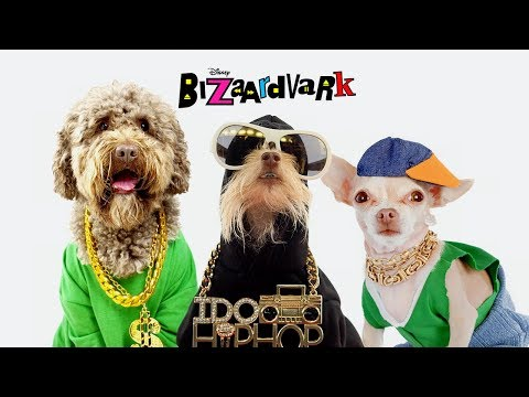 If I Had a Dog 🐶🎼 Music Video | Bizaardvark | Disney Channel