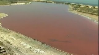 Senegal : Le lac Rose