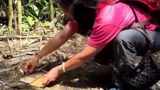 泰雅族獵人指導抓山豬的陷阱