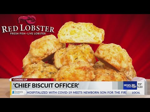 VIDEO-Red-Lobster-to-name-a-lucky-fan-as-its-Chief-Biscuit-Officer-Heres-how-to-apply