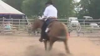 Horse Riding: Western