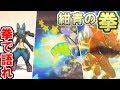 """【ポケモンUSUM】""""紺青の拳""""型ルカリオ……!?【ウルトラサン・ウルトラムーン】"""