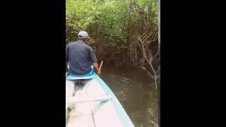 Pescaria na Amazônia com arco e flecha