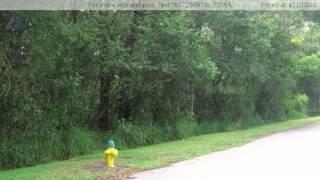 2601 Ashville St, Orlando, FL 32818