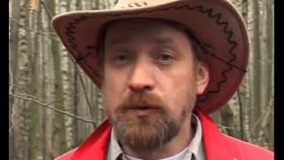 Следопыт с Глебом Данильцевым. Опасные животные и насекомые в лесу