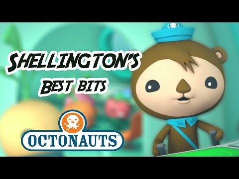 Octonauts - Shellington  Sea Otter | 60+ minutes | Character Best Bits