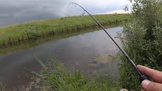Рыбалка после трёхдневного дождя. BLACK DRAGON 0,5 - 5 г. И пара слов про колёса Cordiand OffRoad !