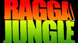 "JUNGLE ""Mix"" N°3 Summer 2012 (Free DL!!!)"