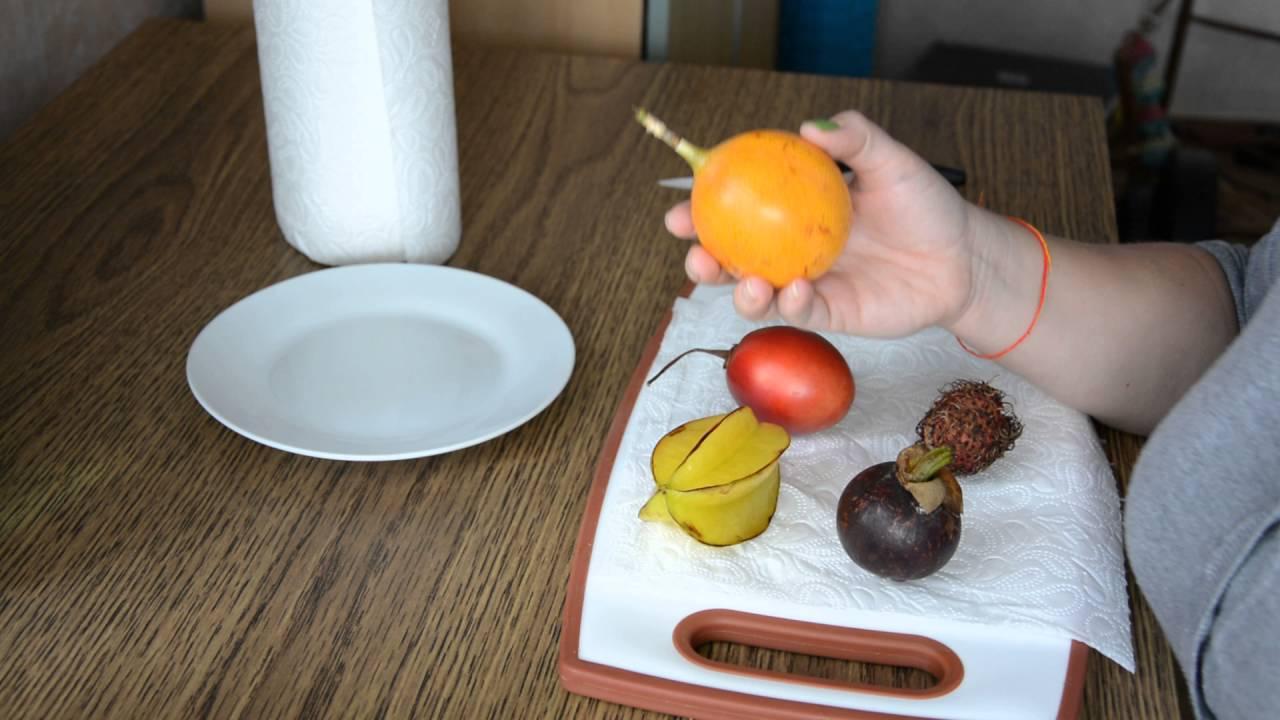 Pflanzen Aus Exotischen Früchten Züchten. So Gehts...   YouTube