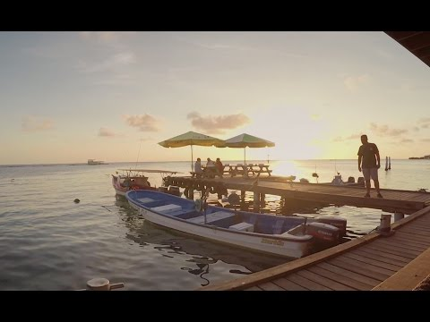 Adobe Premiere Pro: Make your GoPro footage look cinematic.