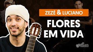Flores Em Vida - Zezé Di Camargo e Luciano (aula de violão completa)
