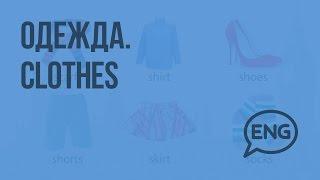 Одежда. Clothes. Видеоурок по английскому языку 4 класс
